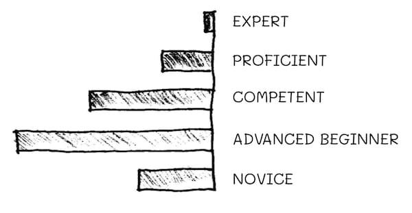 Dreyfus Model - Distribuition of Skills