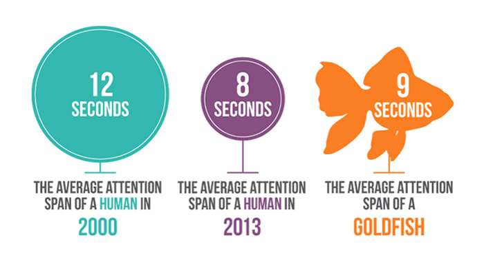 Attention span over the years
