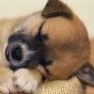 Gwyra bebe pimentel profile picture