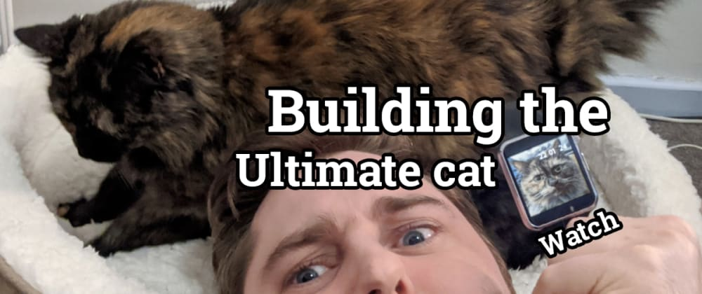 Cover image for Building The Ultimate Cat Watch