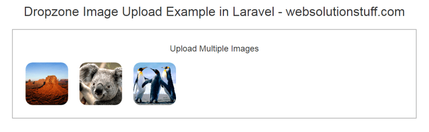 Drag and Drop File Upload Using Dropzone js in Laravel 8