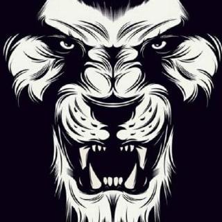 Mohamed Anwar profile picture