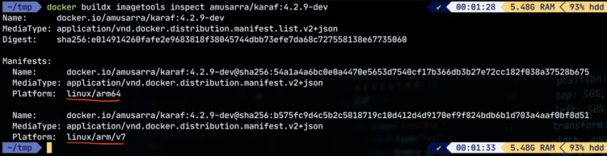 Figura 3 - Inspect dell'immagine Docker di Apache Karaf