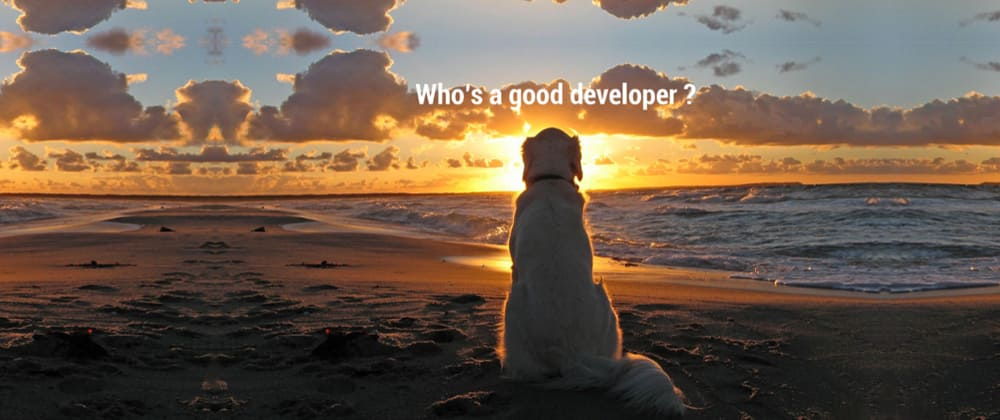Cover image for You are not a real developer