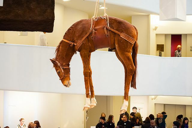 Hoisting a horse