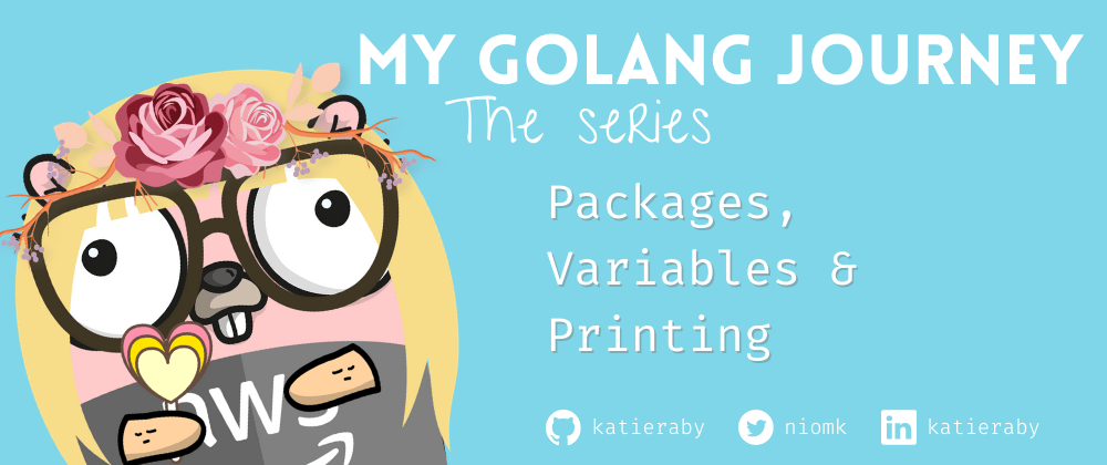 Cover image for Go: Packages, Variables & Printing