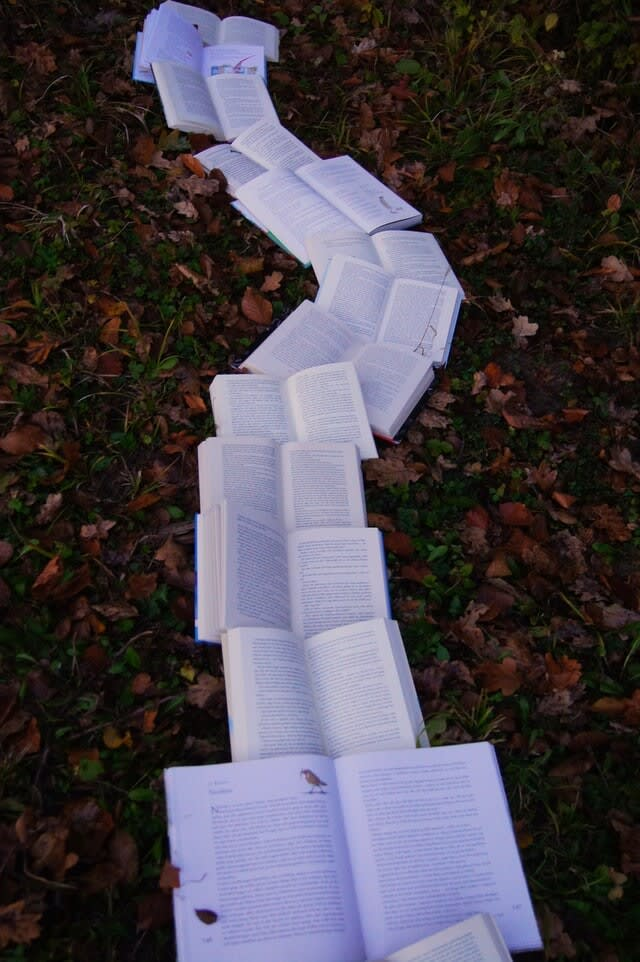 Books Laid Out In a Path