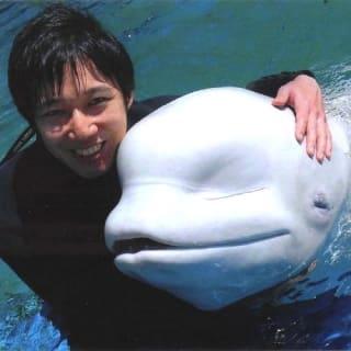 Yohei Seki profile picture