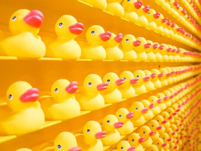 Rows of rubber ducks - Photo by JOSHUA COLEMAN on Unsplash