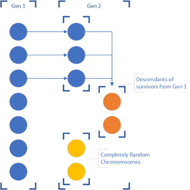 Generation 2 keeps top performers, some of their offspring, and random chromosomes