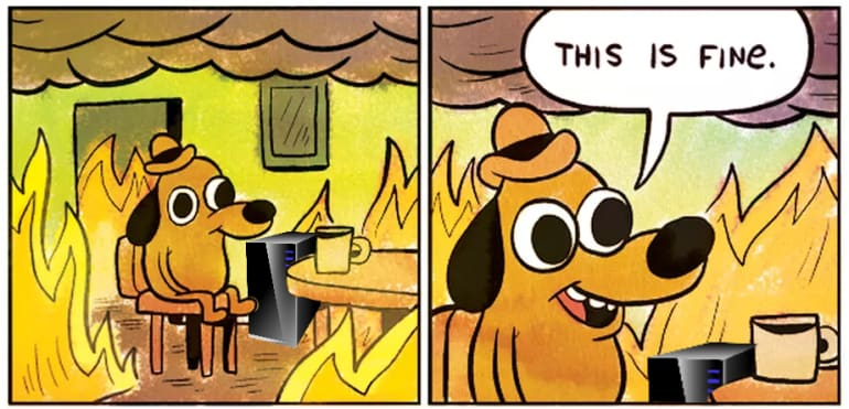 "The ""This is Fine"" dog in a room full of fire with a server in the corner"
