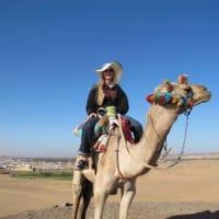 Rachel Soderberg profile image