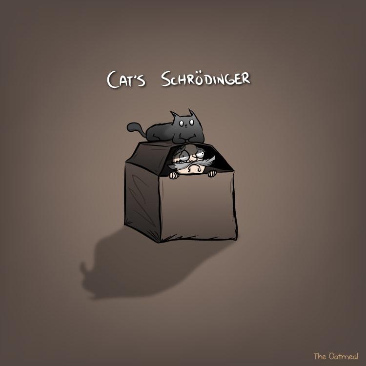 The opposite of Schrödinger's Cat