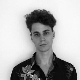 Lukas Vis profile picture