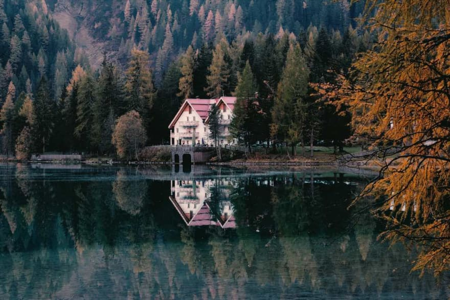 A peaceful cabin in the woods along a lake shoreline