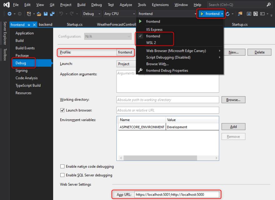 Visual Studio Debug Profile