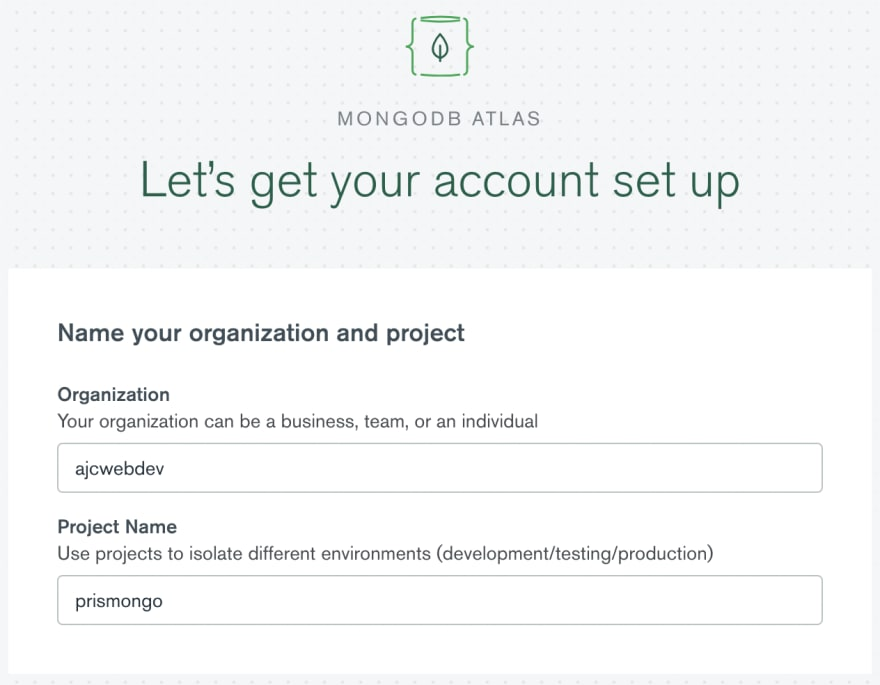 01-organization-and-project-names