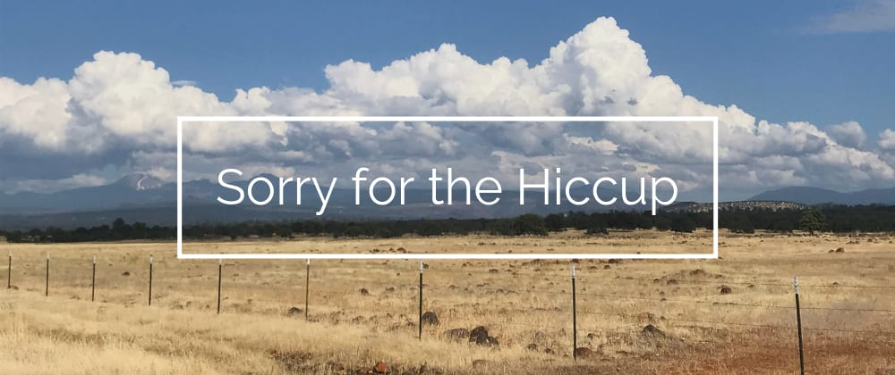 Cover image for Sorry for the Hiccup