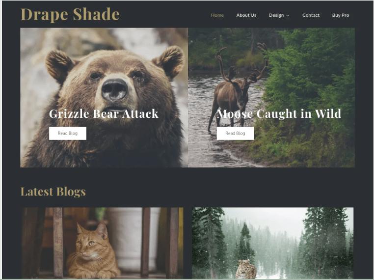 Drape Shade Theme - Sharkthemes