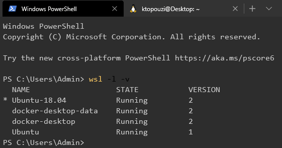 WSL list with version