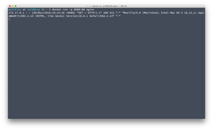 The webserver logs are available in your terminal.