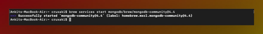 Message on mac terminal on successfully starting mongodb services