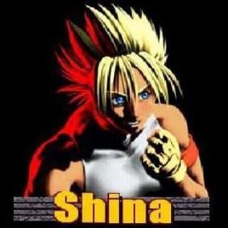 ShinaBR2 profile picture