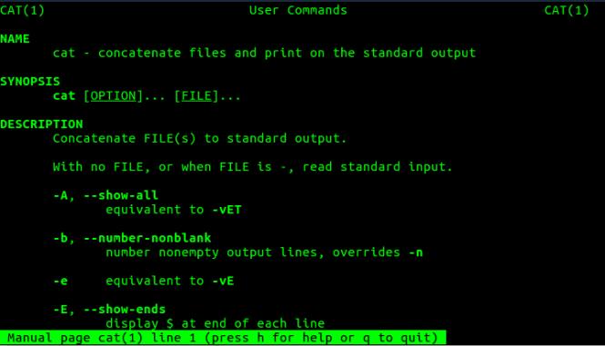 cat_command_man_page_fossnaija