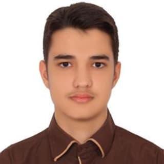 Ali Ayati profile picture