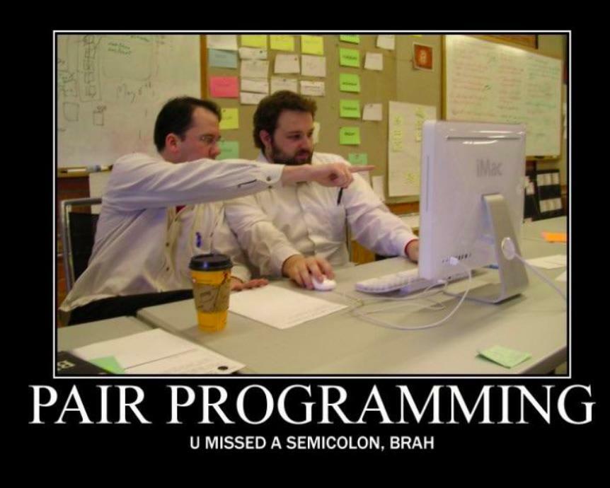 Pair Programming meme