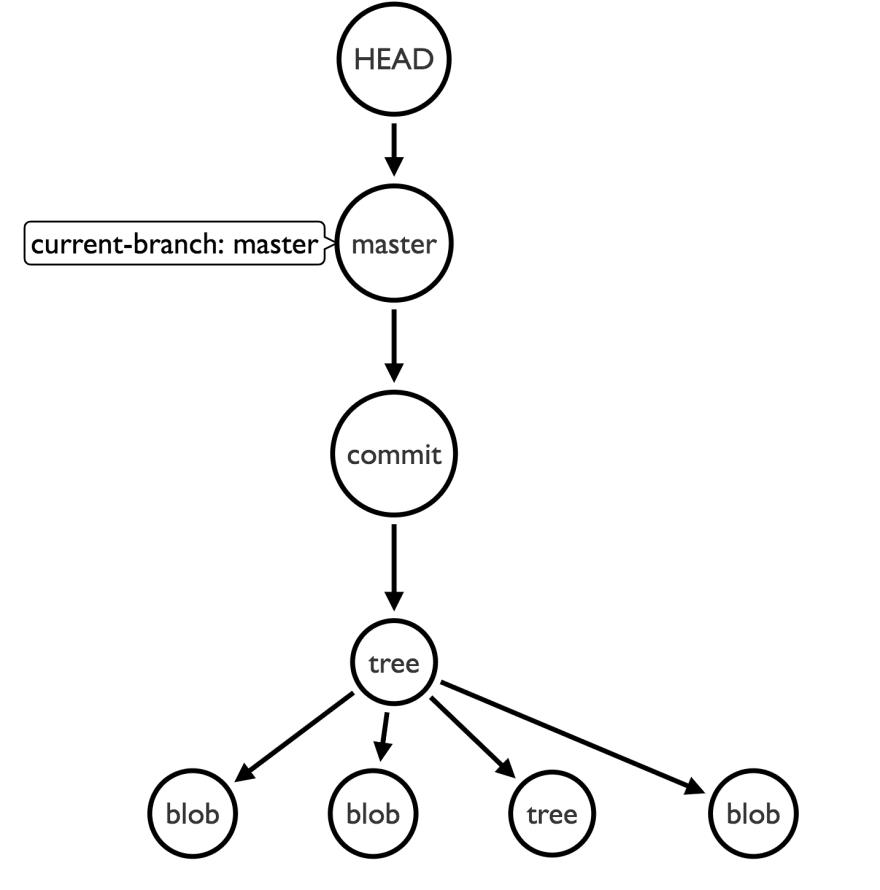 HEAD graph