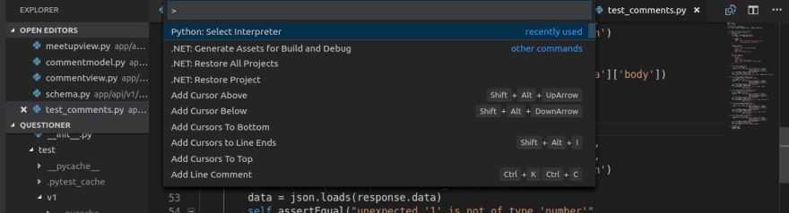 Setting Up PEP8 and Pylint on VS Code - DEV Community