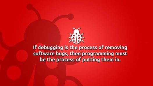 debug process