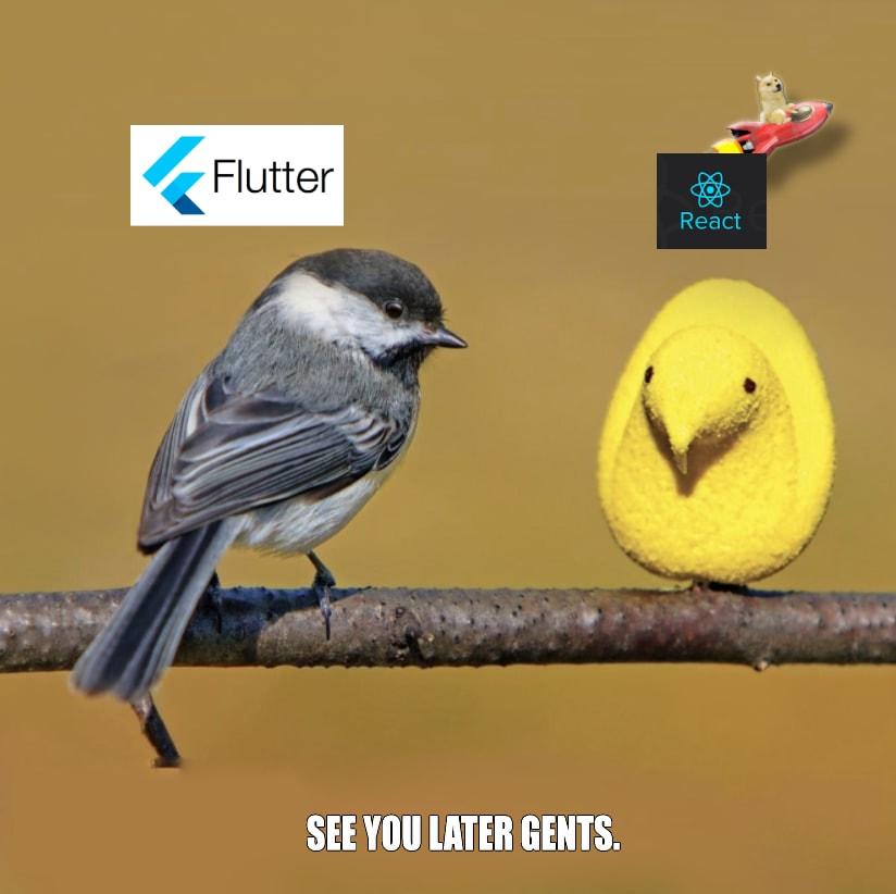 Doge-Flutter