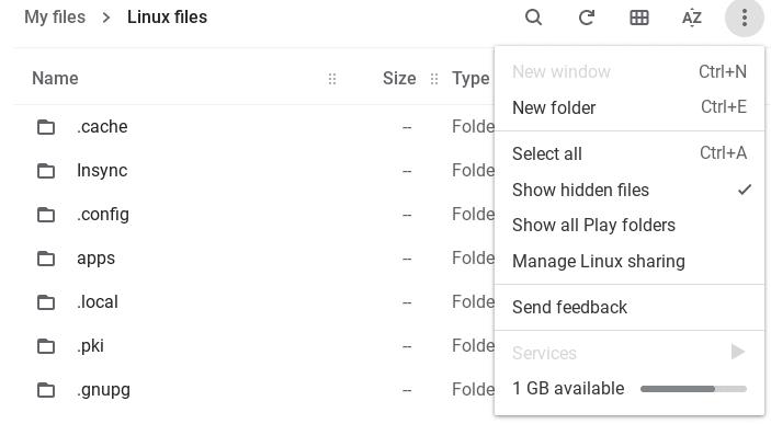 Show Hidden Files in Chrome's Files App