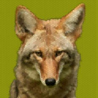 Jan P. profile picture