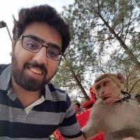 Talha Muhammad profile image