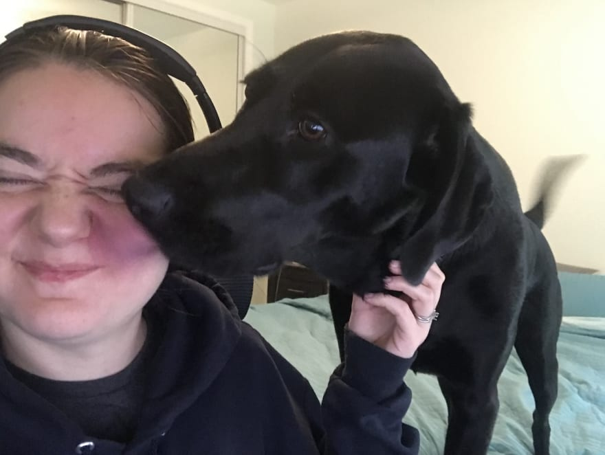 Landra my black lab licking my face while I sit at my desk.