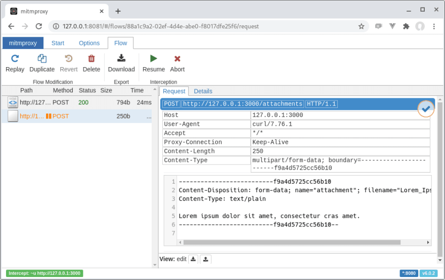 MITM Proxy intercepting requests