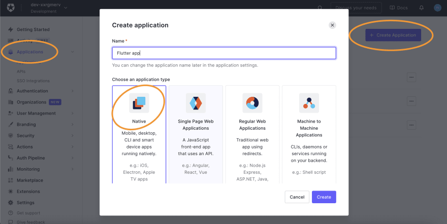 Setting up a new app in Auth0