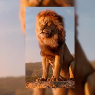 Shiva Sai profile picture