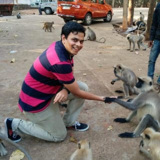 Kalpesh Adhatrao profile picture