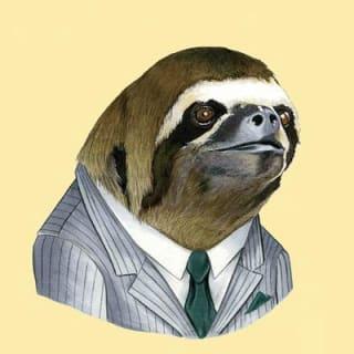 Mateusz profile picture
