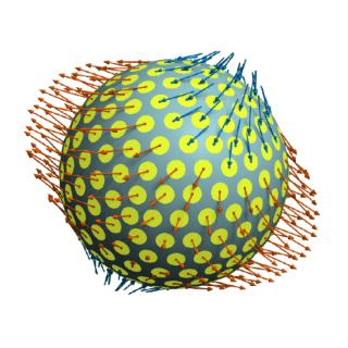 Tensor-Programming profile picture