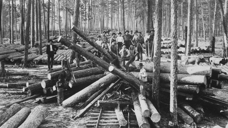Logging lumberjack 01