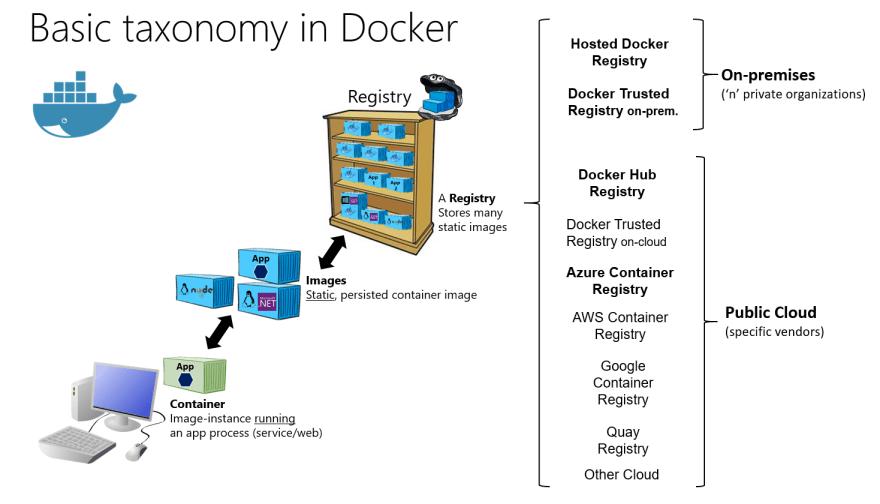 Docker Taxonomy