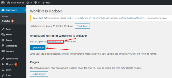 Click Update Now to finish WordPress downgrading.