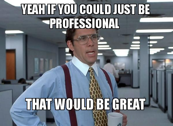 Image on a meme about being professional