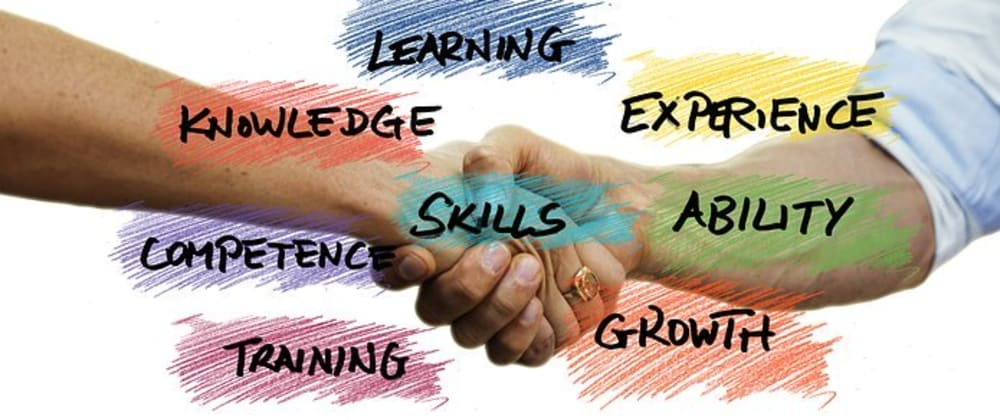 Cover image for The 4 skills I am focusing on this year as a developer