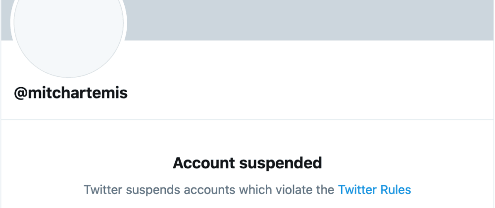 Cover image for My experience being suspended on Twitter